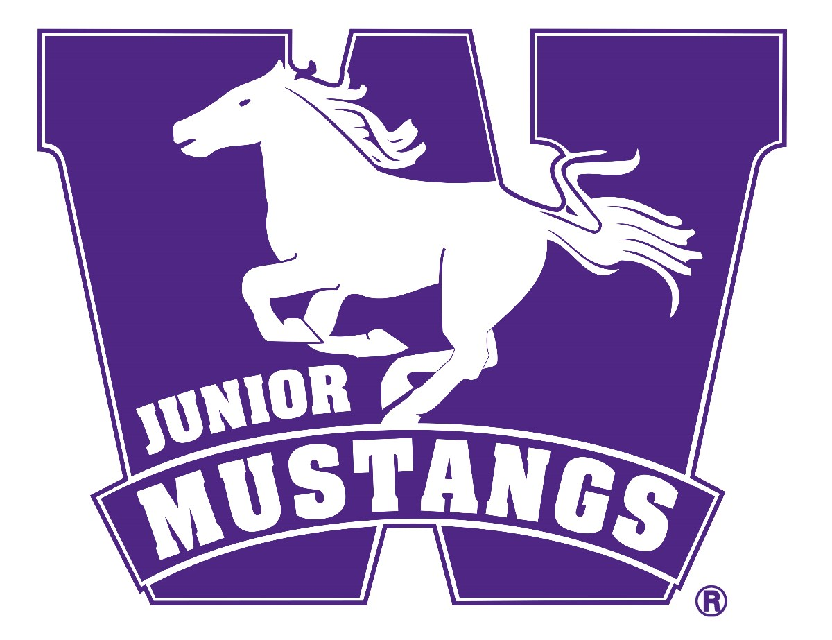 Logo for London Junior Mustangs